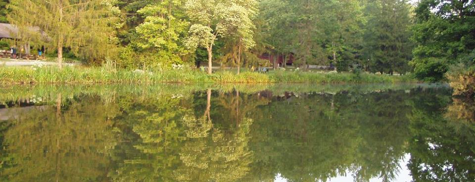 Camp Christoper Reflections